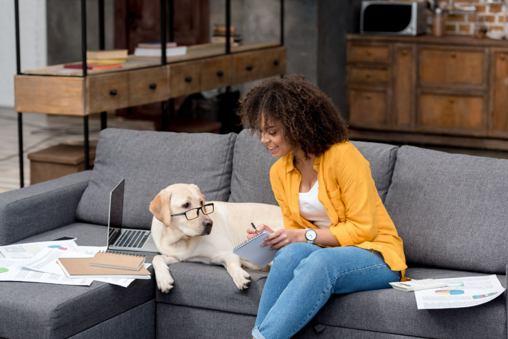 training treats best for dogs